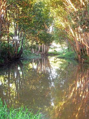 Photograph - Creek Magic Green by Ankya Klay