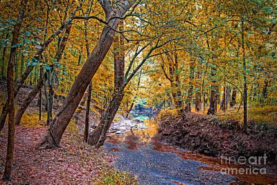 Photograph - Creek Reflections by Scott Hervieux