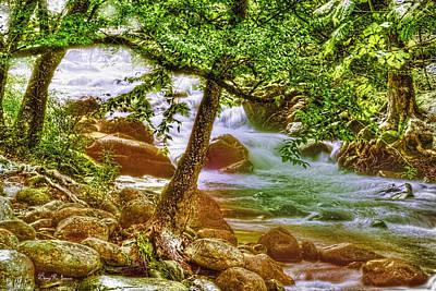 Mountain - Stream - Creek Side Print by Barry Jones