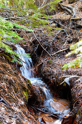 Photograph - Creeks Fall by Brent Dolliver