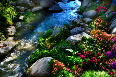 Waterfall Photograph - Creekside Beauty by Lynn Bauer
