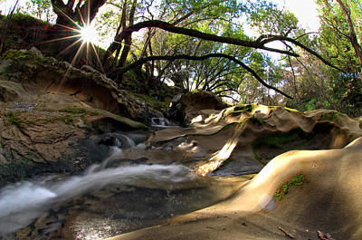 Creekbed Photograph - Creekside Sunrise by Donna Blackhall