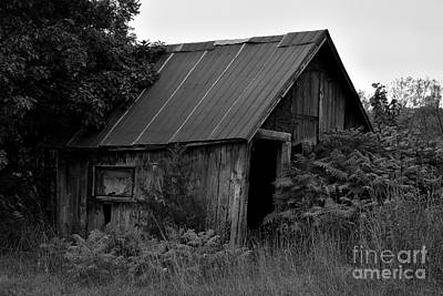 Photograph - Creepy Barn by Joshua McCullough