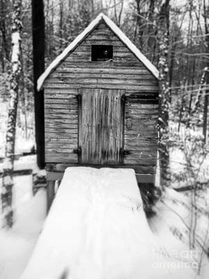 Photograph - Creepy Cabin In The Woods by Edward Fielding