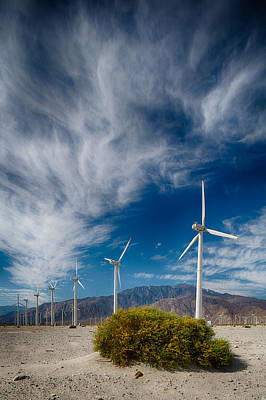 Creosote And Wind Turbines Art Print