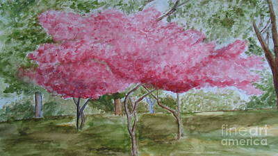 Painting - Crepe Myrtles by Katie Spicuzza