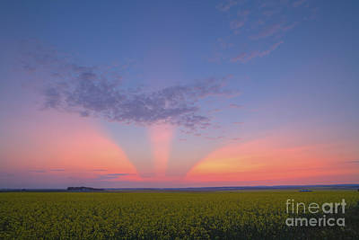 Clouds Over Pasture Photograph - Crepuscular Rays At Sunset, Alberta by Alan Dyer