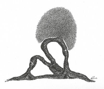 Drawing - Crescent Lunge by Andrea Currie