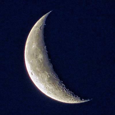 Crescent Moon 2 Art Print