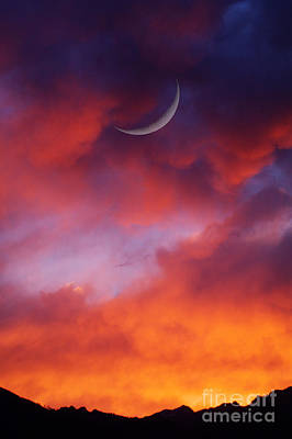 Art Print featuring the photograph Crescent Moon In Purple by Joseph J Stevens