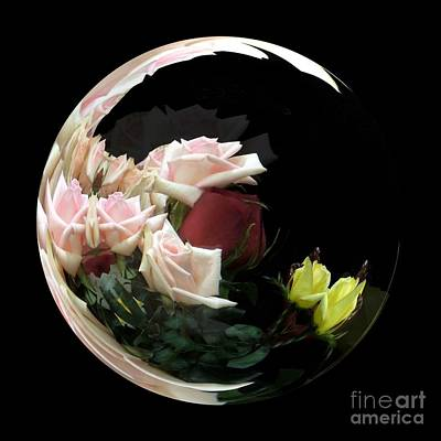 Photograph - Crescent Moon Of Roses by Renee Trenholm