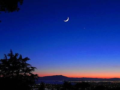 Pyrography - Crescent Moon San Francisco Bay by Diane Lynn Hix