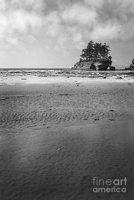 Photograph - Cresent Bay Island Black And White by Sonya Lang