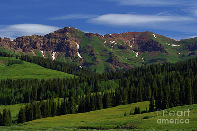 Photograph - Crested Butte July by Kelly Black