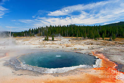 Pineapple - Crested Pool Yellowstone National Park by Ram Vasudev