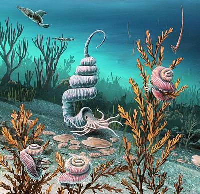 Aquatic Life Photograph - Cretaceous Heteromorph Ammonites by Richard Bizley