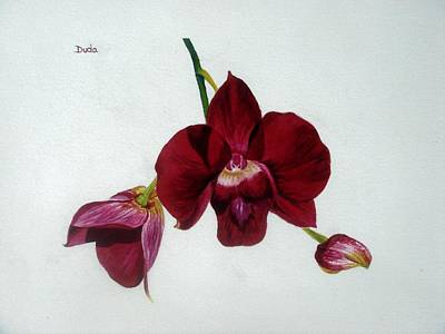 Floral Guest Room Painting - Crimson Beauty by Susan Duda