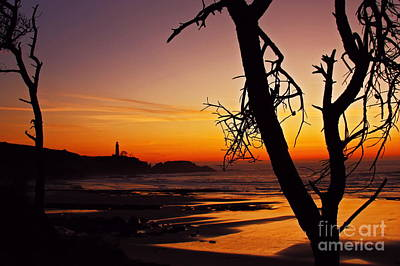 Crimson Dusk At Yaquina Head Sixty Five Print by Donald Sewell