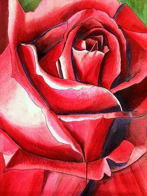 Crimson Glory Rose Art Print by Sacha Grossel