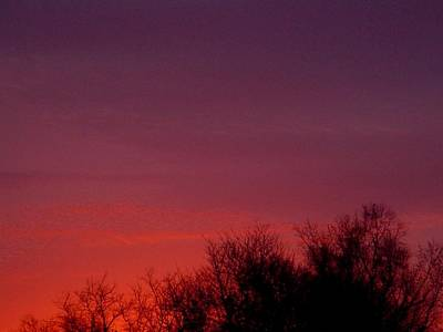 Photograph - Crimson Sky by Lila Mattison