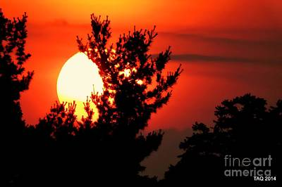 Photograph - Crimson Sunset by Tami Quigley