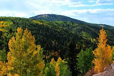 Photograph - Cripple Creek Autumn Colors by Marilyn Burton