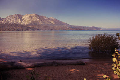 Beach Lake Tahoe Photograph - Crisp And Clear by Laurie Search