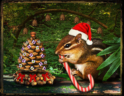 Photograph - Critter Christmas by Shawna Rowe