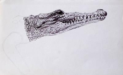 Croc Sketch Art Print