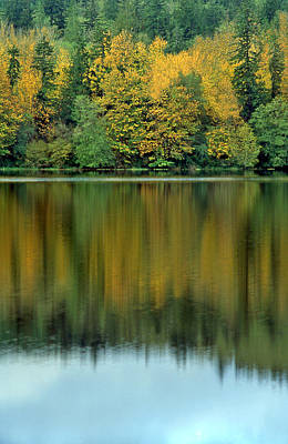Photograph - Reflections Of Fall by Ginny Barklow
