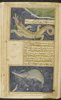 Crocodile Wall Art - Photograph - Crocodile And Water Hog by British Library