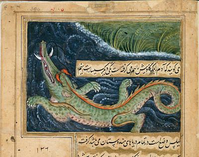 Crocodile Wall Art - Photograph - Crocodile by British Library
