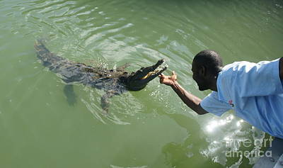 Photograph - Crocodile Dundee Jamaica by Christian Zesewitz