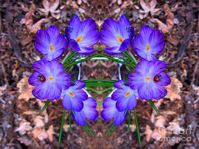 Photograph - Crocus Flower Heart With Ladybug by Debra Thompson