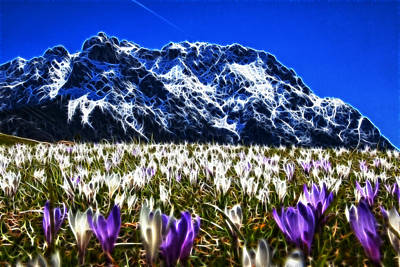 Thomas Kinkade Rights Managed Images - Crocus Meadow Royalty-Free Image by Fabian Roessler