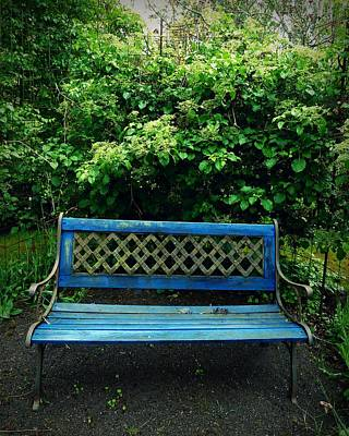 Bamboo Chair Photograph - Crooked Little Bench by Patricia Strand