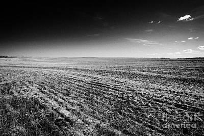 crop stubble in a newly harvested field in rural prairie Saskatchewan Canada stubble is often retain Art Print by Joe Fox