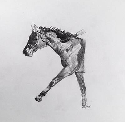 Loping Drawing - Cross Country  by Kassidy Bonertz