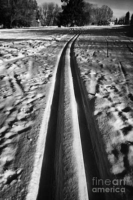 Canadian Sports Photograph - cross country skiing tracks in kinsmen park Saskatoon Saskatchewan Canada by Joe Fox