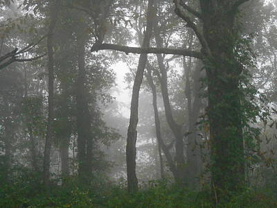 Photograph - Cross In The Woods by Diannah Lynch