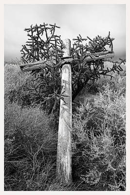 Cross Of Thorns New Mexico Art Print by Mark Goebel