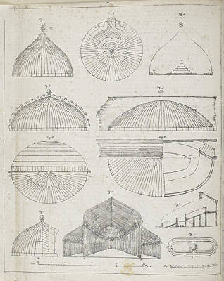 Curvilinear Photograph - Cross Sections Of Greenhouses by British Library