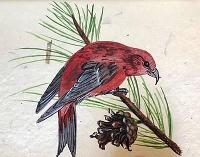 Painting - Crossbill by Jennifer Lake