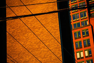 Photograph - Crossing Lines by Karol Livote