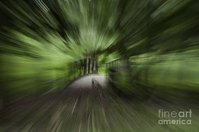 Photograph - Crossing Over by Ronald Grogan