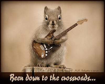 Funny Squirrel Photograph - Crossroads by WB Johnston
