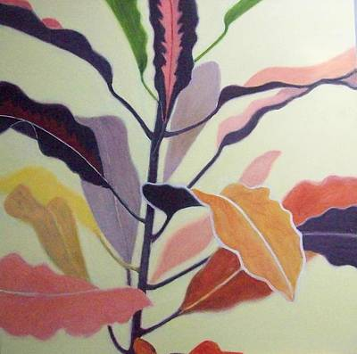Croton Art Print by Mary Adam
