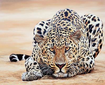 Crouching Leopard Hidden Prey Art Print