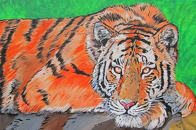 Painting - Crouching Tiger by Martin Williams