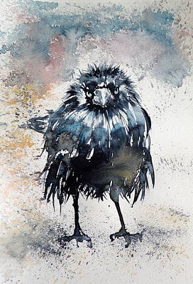 Crow After Rain Art Print by Kovacs Anna Brigitta